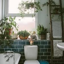 Des plantes vertes dans la salle de bain