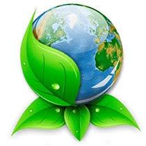 Расходы бюджета на охрану окружающей среды курсовая Расходы бюджета на охрану окружающей среды курсовая файлом