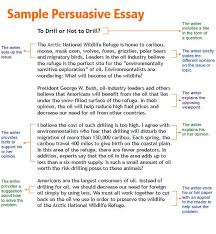 argumentative essay for college
