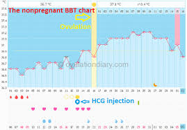 Body Temperature During Pregnancy Chart Bbt At Different Times 5 Impact Factors Ovulationdiary Com