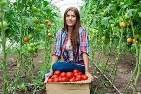 943 form 2015 form 943 what you should know for farmworker withholding pdffiller