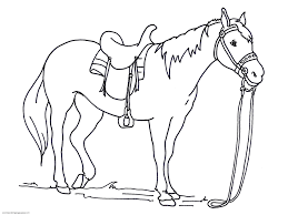 Small Picture Horse Head Coloring Book Page anfukco