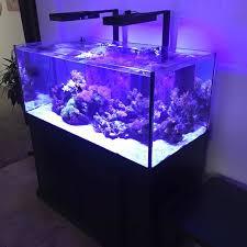 aquarium for office. DSA Rimless Aquarium Traditional-home-office For Office