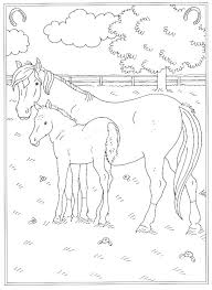 Kleurplaten Van Paarden