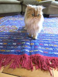 best cat friendly rugs