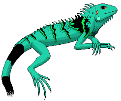 Image result for clipart reptile in tree
