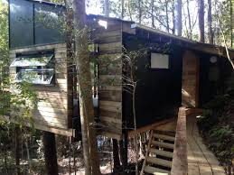 Treehouse Accommodation South Africas Top 7 Safari Lodges With Treehouse Accommodation Nsw