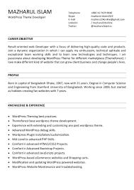 Career Objective Web Developer Barca Fontanacountryinn Com