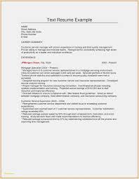 Plain Text Resume Sample 10 New Plain Text Resume Gm O10 Resume Samples Sample Resume