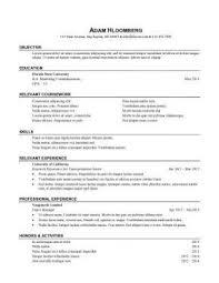 It Intern Resume Internship Sample 13 Competent Impression Addition