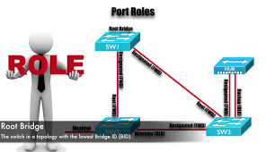 Designated Port Vs Root Port Rapid Pvst Theory Best Cisco Ccna Ccnp And Linux Centos