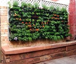 vegetables for small gardens garden designs vegetable image of vertical balcony vegetable garden ideas small garden