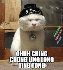 Memes Glorious Memes!!! Mostly cats n kitties! <3 on Pinterest ... via Relatably.com