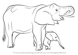 learn how to draw an elephant mother and baby other s step by step drawing tutorials
