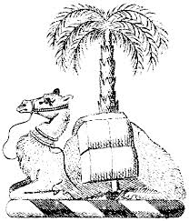 Small Picture Free Camel Coloring Pages