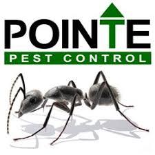 pest control eugene. Perfect Eugene Photo Of Pointe Pest Control  Eugene OR United States Intended Eugene Yelp