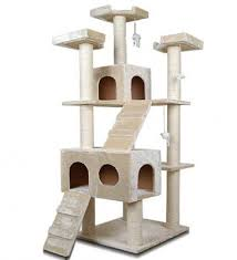 Cat Scratching Furniture Stop Your Cat Damaging Your Home