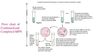 Mpn Chart For Coliforms Bacteriological Analysis Of Drinking Water