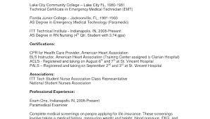 Resume Professional Summary Examples Entry Level Example Sales Classy Resume Summary Examples Entry Level