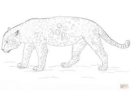 Small Picture Jaguar coloring page Free Printable Coloring Pages