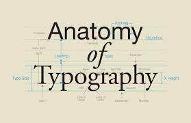 type teacher   typography  anatomy of typography