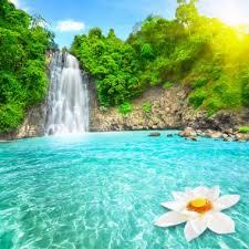 beautiful waterfall hd wallpaper nature