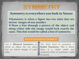Lines Of Symmetry Powerpoint Symmetry In Maths Powerpoint Presentation