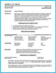 auto sales resume samples sample car sales resumes military bralicious co