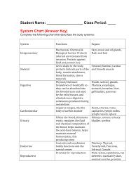 Body Systems Chart Body Sytem Chart Answer Key