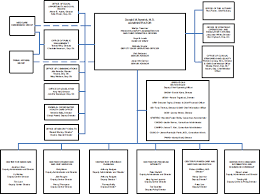 Chicago Department Of Public Health Organizational Chart 4 Achieving Cultural And Organizational Transformation