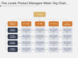 Five Levels Product Managers Matrix Org Chart Template