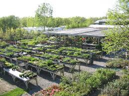 landscape nursery garden center