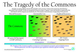 tragedy of the commons essay the environment and society tragedy of the commons essay question essay for youtragedy of the commons essay question image