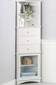 This petite cabinet tucks into those unused corners for extra hidden storage,  from toiletries in  Bathroom Corner ...