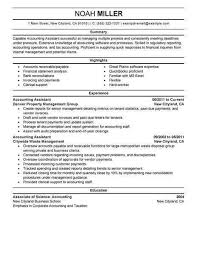 Accounts Assistant Resume Resume Sample