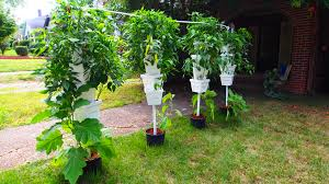 Diy Hydroponic Tower System Projects