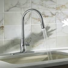 Whole Kitchen Faucets Good Industrial Kitchen Ideas Latest Kitchen Ideas