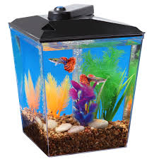 Cool Aquariums For Sale Aquariums Bowls Walmartcom