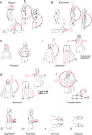 Isometric Exercise Definition Of Isometric Exercise By