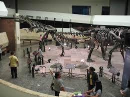 พิพิธภัณฑ์สิรินธร   ฐานข้อมูลพิพิธภัณฑ์ในประเทศไทย