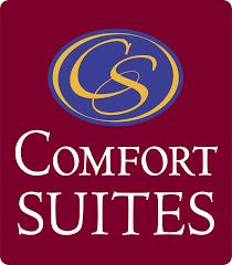 Image result for comfort suites