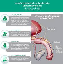 Hết xuất tinh sớm nhờ kĩ thuật vi điều khiển dây thần kinh lưng dương vật -  Rối Loạn chức năng sinh dục