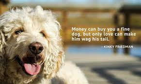 Dog Quotes Inspirational