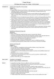 Insurance Follow Resume Samples Velvet Jobs
