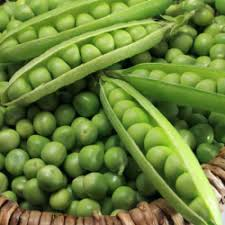 """Отзывы о <b>Семена гороха</b> АгроВест """"<b>Альфа</b>"""""""