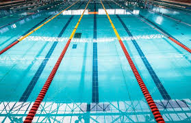 swimming pool lane lines background. Olympic Size Pool From Swimmers Start Block Position Of Color Lane Markers And Black Floor Swimming Line Indoors \u2014 Photo By ChrisVanLennepPhoto Lines Background L