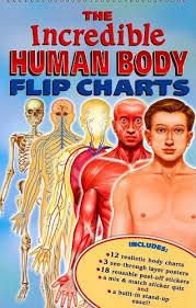 Free The Incredible Human Body Flip Charts Pdf Download