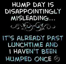 Funny Hump Day Quotes Interesting Hump Day Quotes Quote Funny Quotes Days Of The Week Humor Wednesday