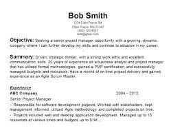 Resume Objective Customer Service Sample Resume Objectives For Management 86