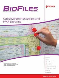 Carbohydrate Metabolism Biofiles 2 6 Sigma Aldrich